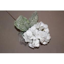 Softblume, grau/weiß